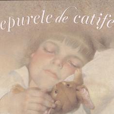 MARGERY WILLIAMS - IEPURELE DE CATIFEA ( ILUSTRATII DE GENNADY SPIRIN )