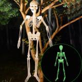 Cumpara ieftin Schelet fosforescent inaltime 150 cm, lumineaza intens in intuneric, decor Halloween
