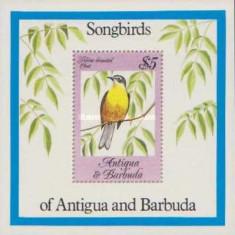 Antigua Barbuda 1984 Pasari, colita neuzata