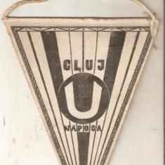 Fanion U Cluj 1919