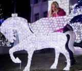Iluminat festiv profesional, decor iluminat festiv primarii, case, targuri