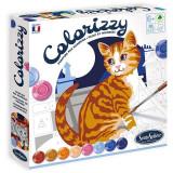 Pictura pe numere Colorizzy - Pisici, Sentosphere