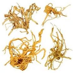 """Cuckoo Root """"EXCLUSIV"""" rădăcină pentru acvariu, 30 - 60 cm"""