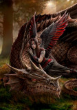 Cumpara ieftin Felicitare zână și dragon Prieteni înaripați