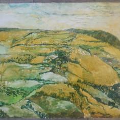 Peisaj cu dealuri// ulei pe carton subtire