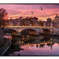 Monitor LED Samsung 55inch QB55R, UHD (3840 x 2160), DVI, HDMI, WiFi (Negru)