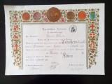 Diploma veche vintage doctorat litere Italia Torino 1951