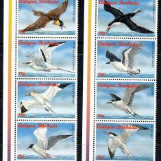 ANTIGUA&BARBUDA 1996, Fauna - Pasari, serie neuzata, MNH