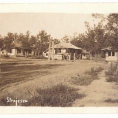 1268 - STRAJESCU, Vrancea, Romania - old postcard, real PHOTO - unused - 1918