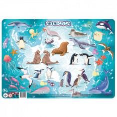 Puzzle cu rama - Antarctica (53 piese)
