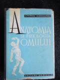 Anatomia si fiziologia omului- I. C. Petricu, I. C. Voiculescu