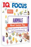 IQ FOCUS Animale • nivel Junior Plus