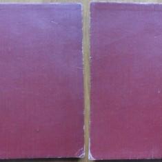 Manuscris , poezii de Laurentiu Profeta recenzia olografa a lui George Calinescu
