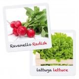 Set Creativ Pentru Copii Gioca Green Plantare Si Crestere Salata Ridiche Quercetti