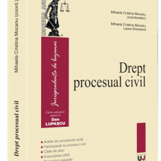 Drept procesual civil   Laura Smarandi