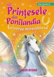 Printesele din Ponilandia. Salvarea miraculoasa, Chloe Ryder