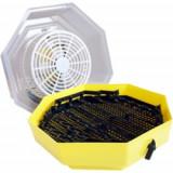Clocitoare Incubator electric CLEO 5 D cu dispozitiv de intoarcere