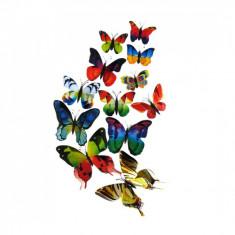 Fluturi 3D magnet, dubli, decoratiuni casa, evenimente, 12 bucati, colorati, A23