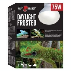 Bec REPTI PLANET Daylight Frosted 75W