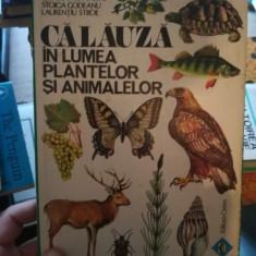 Calauza in lumea plantelor si animalelor – Constantin Parvu