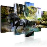 Tablou canvas 5 piese - Cal negru pe fundalul cascadei paradisului - 200x100 cm, Artgeist