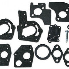 Kit reparatie carburator Briggs Stratton 3-5 HP 49-0780/ 494624/495606