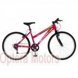 Bicicleta cu motor 2T 52cc Trekking 26″ RICH R2619A, 17, 6, Velors