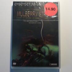 mulberry street - dvd