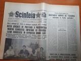 Scanteia 21 octombrie 1983-vizita lui ceausescu in egipt,dinamo -hamburg 3-0