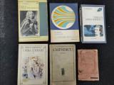 Lot 6 carti vechi despre Mihai Eminescu.