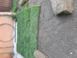 Gazon rulou