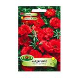 Seminte flori Florian Floare de piatra 0.5 g