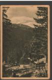CPI B14211 CARTE POSTALA - PALTINIS, VEDERE, LIBRARIA NOASTRA