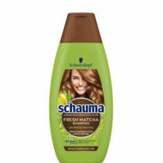 Cumpara ieftin Sampon pentru par gras Schauma Fresh Matcha, 400 ml