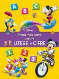 Prima mea carte despre litere și cifre, Disney