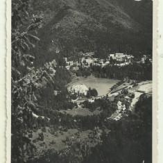 Cp Tusnad Bai : Vedere generala - 1938, Necirculata, Fotografie, Baile Tusnad