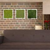 Tablou licheni Artflora Uni GreenBroccoli MDF Alb 25CM