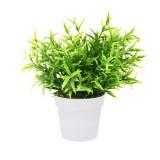 Cumpara ieftin Planta Artificiala Decorativa, H 24 cm, cu frunze Ascutite verde deschis, in ghiveci de plastic alb, 8.5x9cm