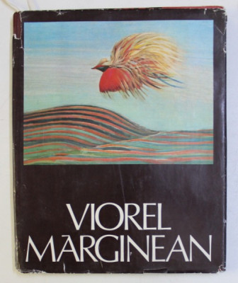 VIOREL MARGINEAN - THE LANDSCAPE AS A STATE OF THE SOUL by VASILE DRAGUT , 1982 foto