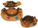 Decor Aer Crab