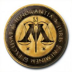 Insigna - Harry Potter, Ministry Of Magic | Pyramid International