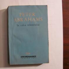 """CY - Peter ABRAHAMS """"In Calea Trasnetului"""""""