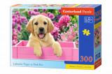 Cumpara ieftin Puzzle Catelus Labrador in cutie roz, 300 piese