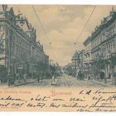 4582 - BUCURESTI, Elisabeth Ave. tramway, Litho - old postcard - used - 1900, Circulata, Printata
