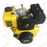 Motor motocultor Diesel 5.5 CP, China
