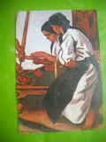 HOPCT 52569 TARANCI TESAND /STEFAN DIMITRESCU 1886-1933 -CP PICTURA -NECIRCULATA