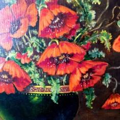 Tablou vaza  maci ulei pe carton semnat pictor roman semnatura rama antichitati, Flori, Realism
