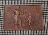 Placheta U.G.I.R - 1928 - Uniunea generala a industriasilor din Romania