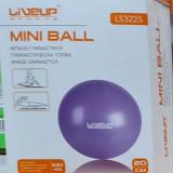Minge gimanstica Overball LS3225 diametru 20 cm