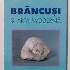 Dan Grigorescu - Brâncuși și arta modernă